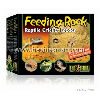 Cricket Feeder