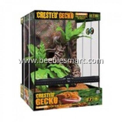Crested Gecko Kit Large