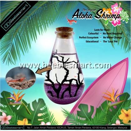 The Original Aloha Shrimp - Mood Habitat: Passionate Purple