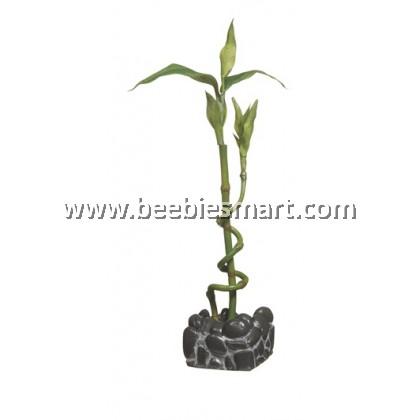 Marina 2L Betta Kit Bamboo Ornament