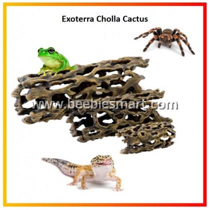 Exoterra Cholla Cactus
